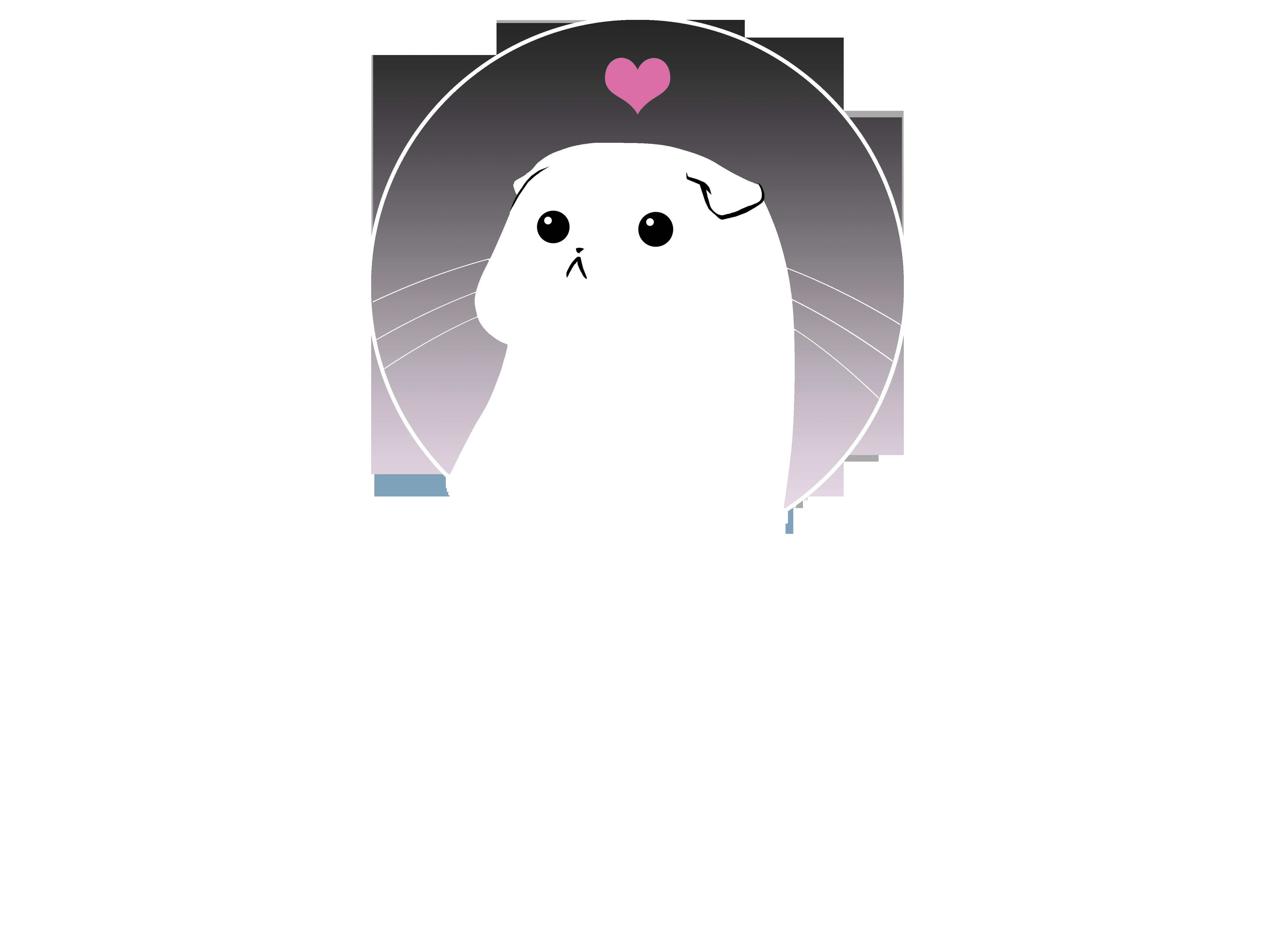 Chowbella*PL hodowla kotów scottish fold